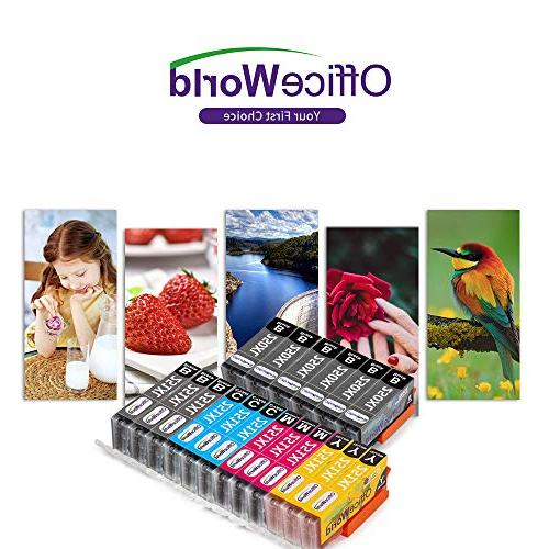 Office World Compatible Ink Cartridge for PGI-250XL PIXMA MG5520 MG5420 IP8720